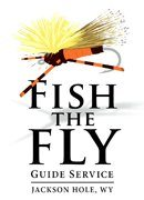 Fish The Fly