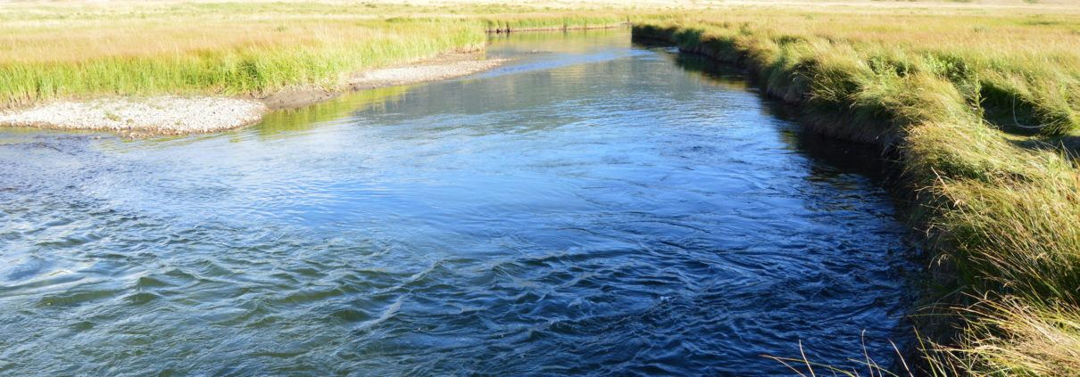 Flat Creek National Elk Refuge Fly Fishing
