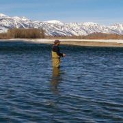 January fly fishing in Jackson Hole WY