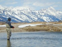 Wade fishing in the Snake River in April